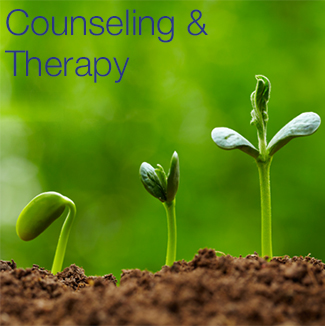 Counseling1